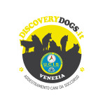 logo-discovery-dogs